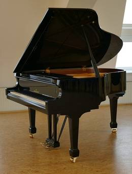 uiterlijk piano