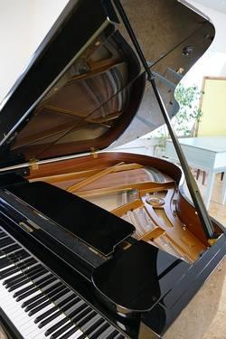 klep piano