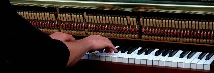 piano hamers