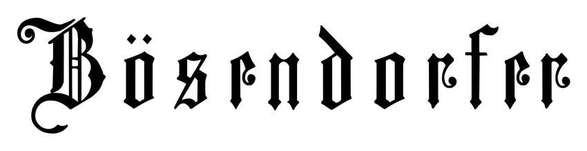 logo bösendorfer