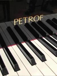 Een Petrof piano