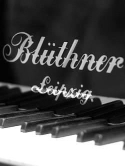 Een Blüthner piano